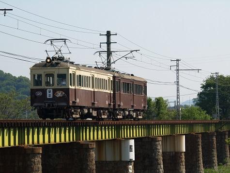 P5013987.JPG